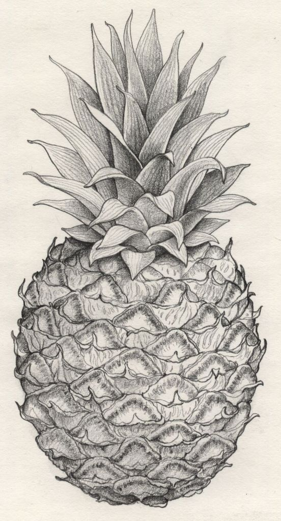 Whole-Pineapple-pencil