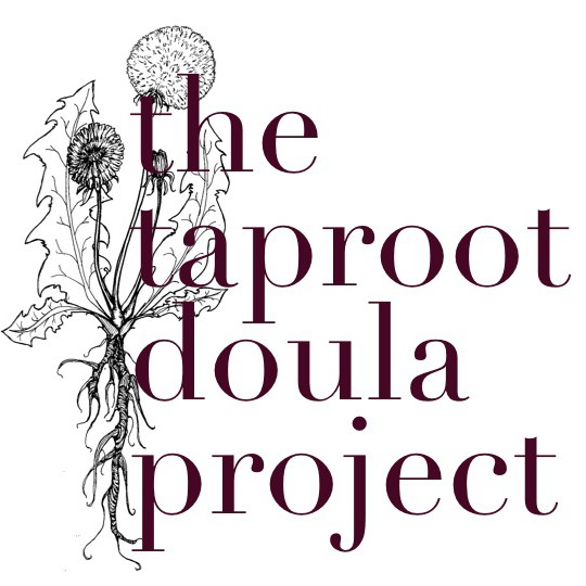 doula project Tcdp monthly meeting next date to be announced 1121 jackson st ne suite #119 minneapolis, mn 55413.